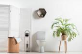 interiér bílé moderní koupelny s WC miskou v blízkosti skládací plátno, koš na prádlo, palma a toaletní kartáč