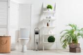belső tér fehér modern fürdőszoba toalettel közel összecsukható képernyő, szennyes kosár, állvány és növények