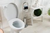 belső tér fehér modern fürdőszoba toalettel közel összecsukható képernyő, WC kefe, WC-papír, állvány és növények
