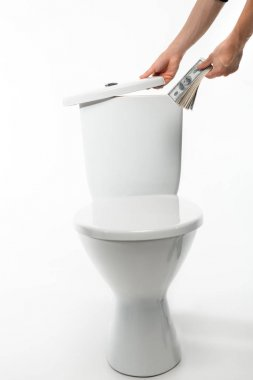 cropped view of woman hiding dollars in ceramic clean toilet bowl on white