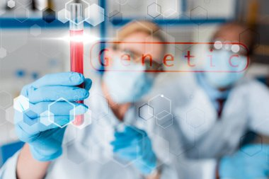 Selective focus of multicultural biologists looking at test tube with genetic illustration stock vector