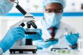 levágott kilátás biológus segítségével mikroszkóp és afro-amerikai kolléga nézi levelek