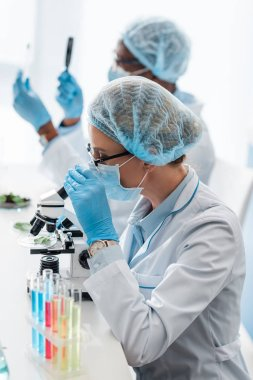 Selective focus of biologist using microscope and african american colleague holding magnifier stock vector