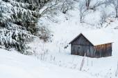 Altes Holzhaus in schneebedeckten Bergen in der Nähe von Bäumen