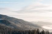 malebný pohled na zasněžené hory s borovicemi v bílých nadýchaných mracích a slunečním svitu