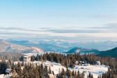 malebný pohled na vesničku ve zasněžených horách s borovicemi za slunečního svitu