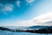 malebný pohled na zasněžené hory s borovicemi v bílých nadýchaných mracích