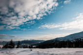 Fotografie scenic view of snowy mountains with pine trees in white fluffy clouds