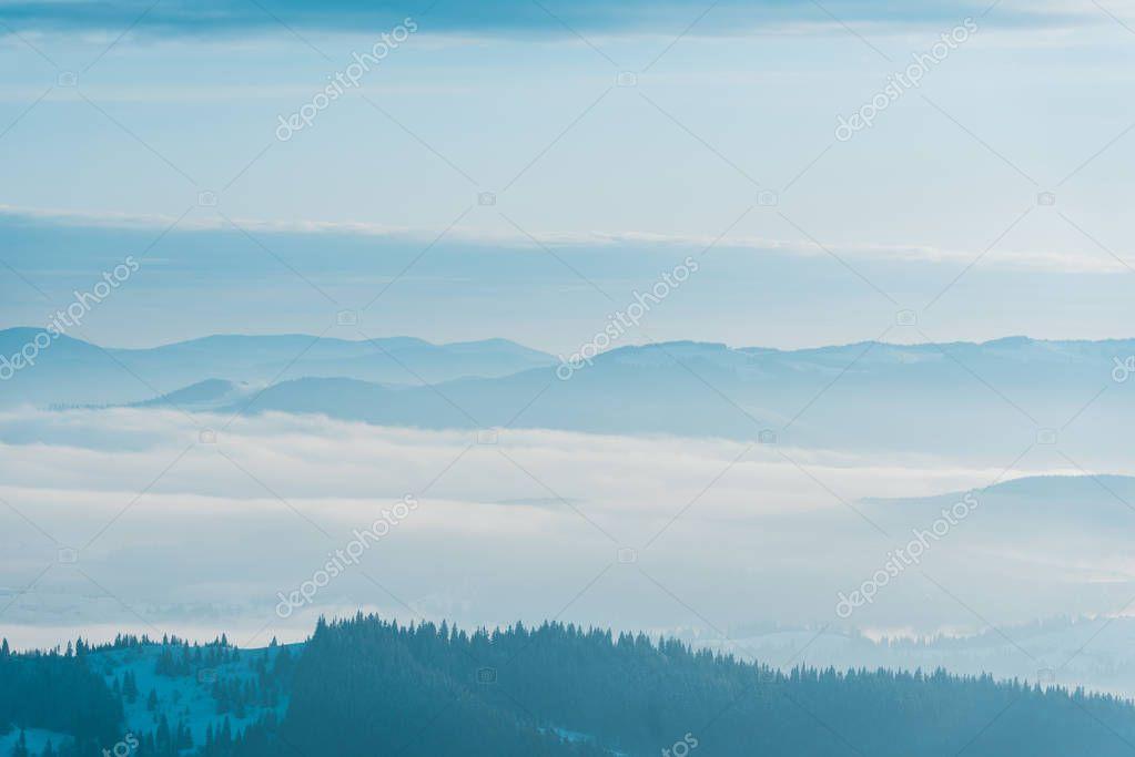 Фотообои живописный вид на заснеженные горы с соснами в белые пушистые облака