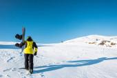 zpět pohled sportovce držícího snowboard při chůzi na bílém sněhu