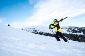 boční pohled na lyžaře při chůzi s lyžařskými hole na sněhu