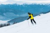 zpět pohled na lyžaře držícího hole a lyžování na sjezdovce se sněhem v horách