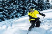 lyžař v brýlích a helmě držící lyžařské hole a lyžování v blízkosti jedlí