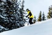 sportovec v brýlích a helmě drží lyžařské hole při lyžování v blízkosti jedlí