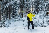 Skifahrer mit Skibrille hält Skistöcke und Skier in der Nähe von Tannen