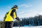 nízký úhel pohledu na lyžaře v helmě stojící na sněhu v blízkosti jedlí