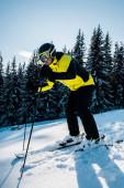 lyžař v brýlích a helmě lyžování na sněhu u jedlí
