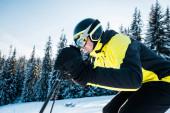 Schöner Skifahrer mit Helm auf Schnee in der Nähe von Tannen
