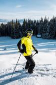 lyžař v brýlích stojící na sněhu a držící lyžařské hole u stromů