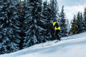 Skifahrer mit Skibrille und Helm auf Schnee und Skistöcken in der Nähe von Bäumen