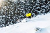 sportovec v brýlích drží lyžařské hole při pádu u jedlí