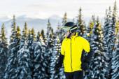 Fotografie pohledný lyžař v brýlích a helmě stojící v blízkosti zelených jedlí v horách