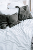 Photo grey pillows on bed with white bedding