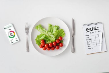 Top view of fresh vegetables on plate, smartphone with calorie counting app and notebook with diet plan on white background