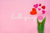 Top kilátás papír szív és tulipán rózsaszín háttér, hello tavasz illusztráció