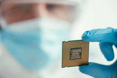 selective focus of engineer holding computer microchip