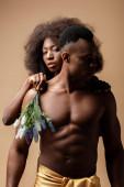 sexy nahý africký americký pár pózuje s rostlinou izolované na béžové