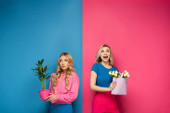 Photo Pensive and excited blonde girls with bouquet and plant on pink and blue background