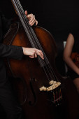 Fotografie partial view of professional musicians playing on violin and contrabass on dark stage