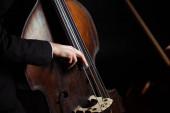 oříznutý pohled hudebníka hrajícího na kontrabas na tmavém jevišti