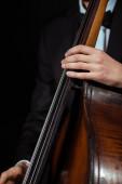 Ausgeschnittene Ansicht eines männlichen Musikers, der auf Kontrabass isoliert auf Schwarz spielt