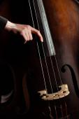 Ausgeschnittene Ansicht eines professionellen Musikers am Kontrabass auf dunkler Bühne