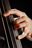 zblízka hudebník hrát na kontrabas izolované na černém