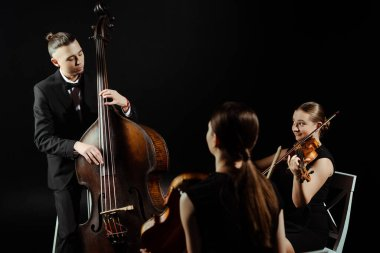 trio of musicians playing on double bass and violins isolated on black