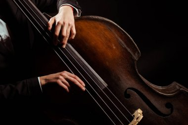 cropped view of musician playing on double bass isolated on black