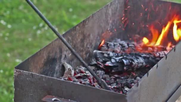 Grilování marinované vepřové maso s cibulí na grilovací rošt v plamenech