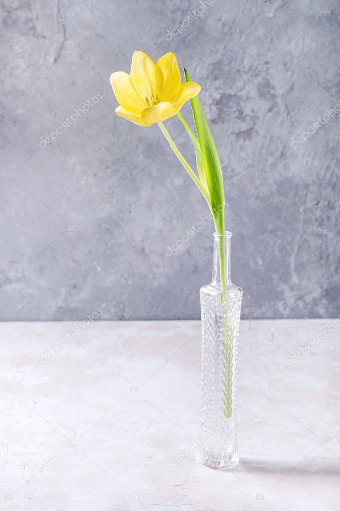 Yellow tulip in bottle