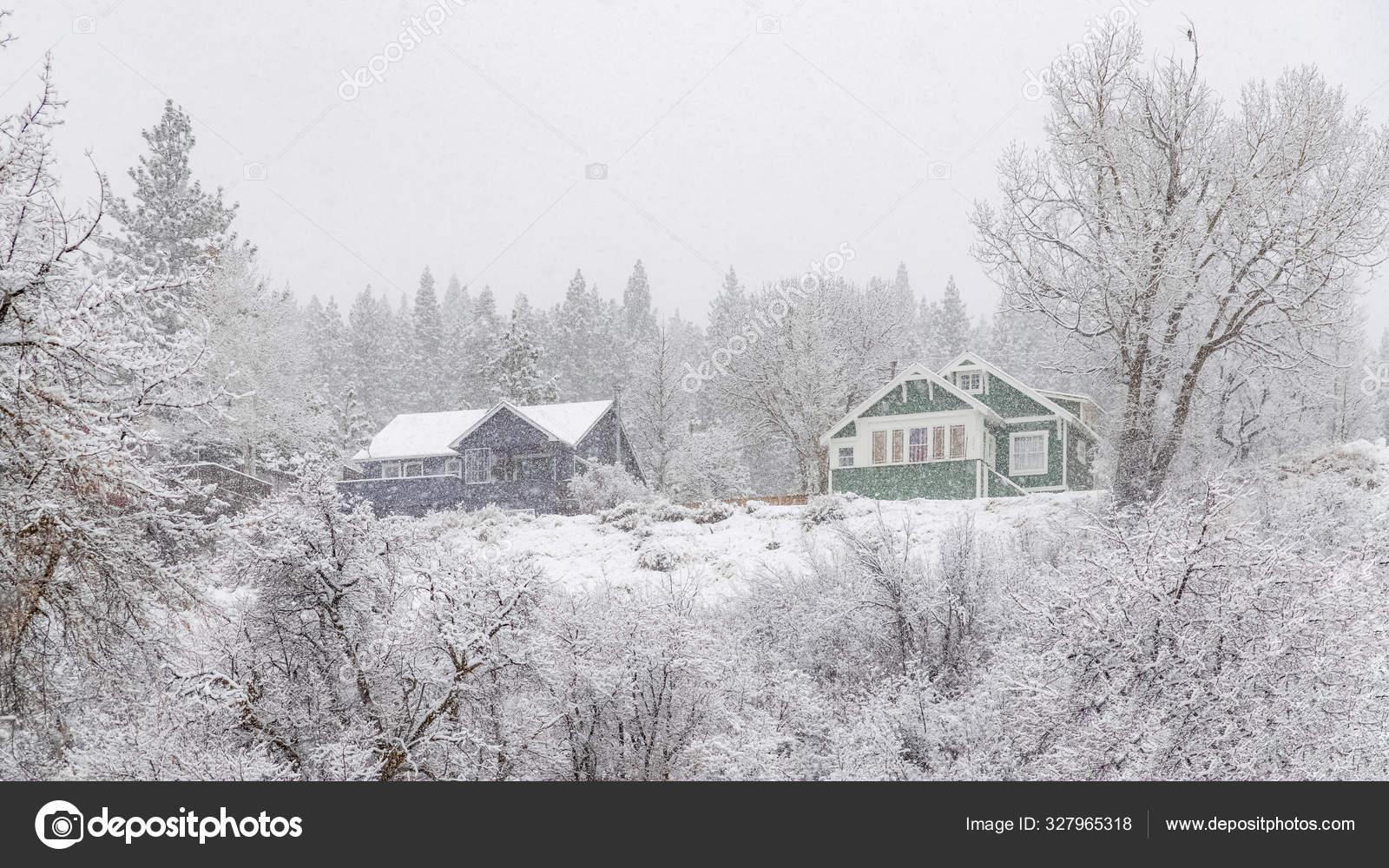 зеленый снегопад в калифорнии фото знаю