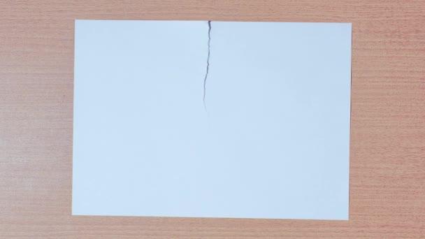 List papíru se rozlomí na dvě ve stopkách
