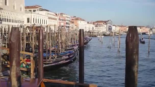 Gondoly plují na vodě Benátek