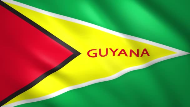 Flag of Guyana with the name of the country