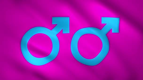 Gay a mužský symbol pohlaví na vlajce