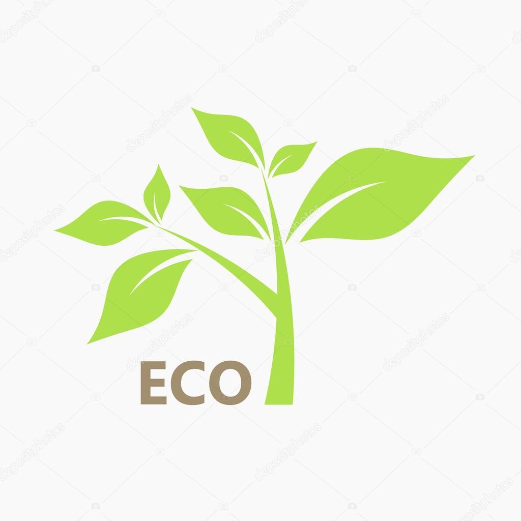 Eco plant vector