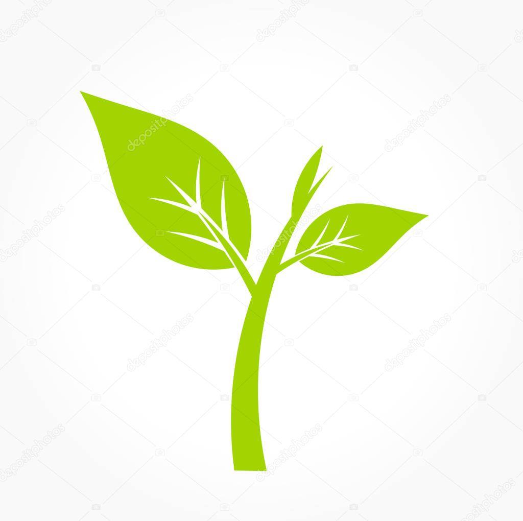 Green plant icon