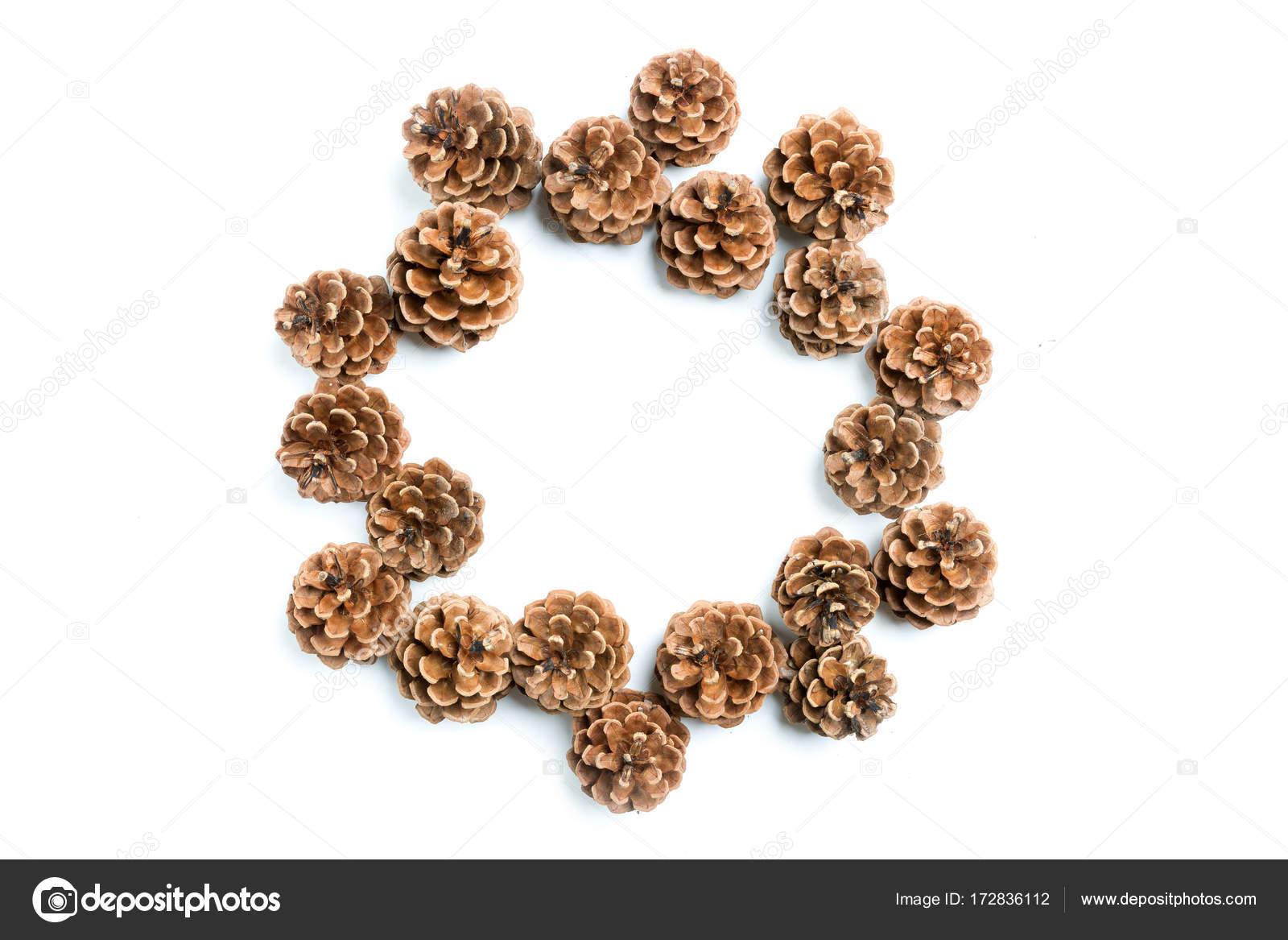 Tannenzapfen, flach legen — Stockfoto © fotyma #172836112
