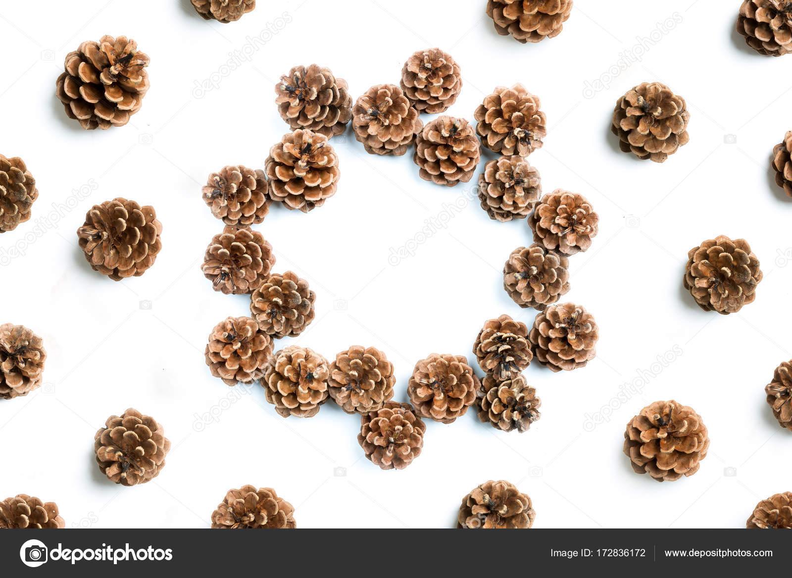 Tannenzapfen, flach legen — Stockfoto © fotyma #172836172